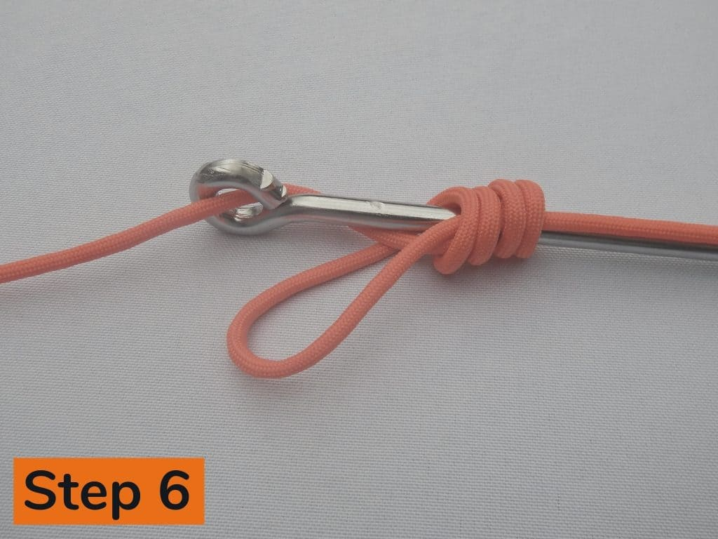 Snell Knot Step 6