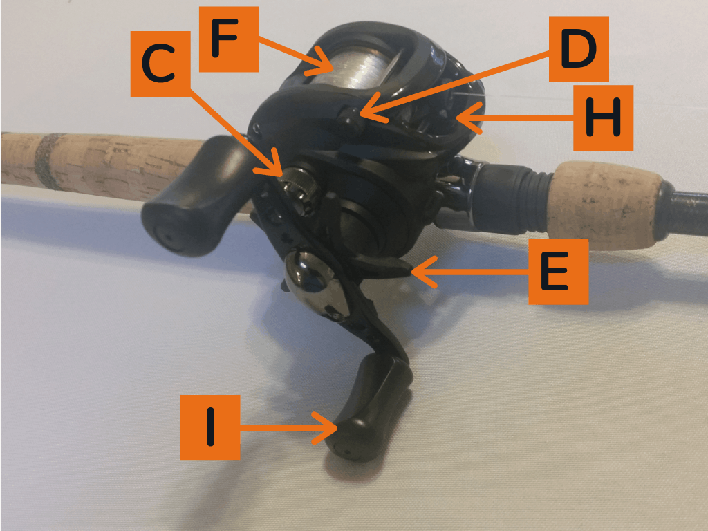 What are the Parts of a Baitcasting Reel? - Orbit Fishing