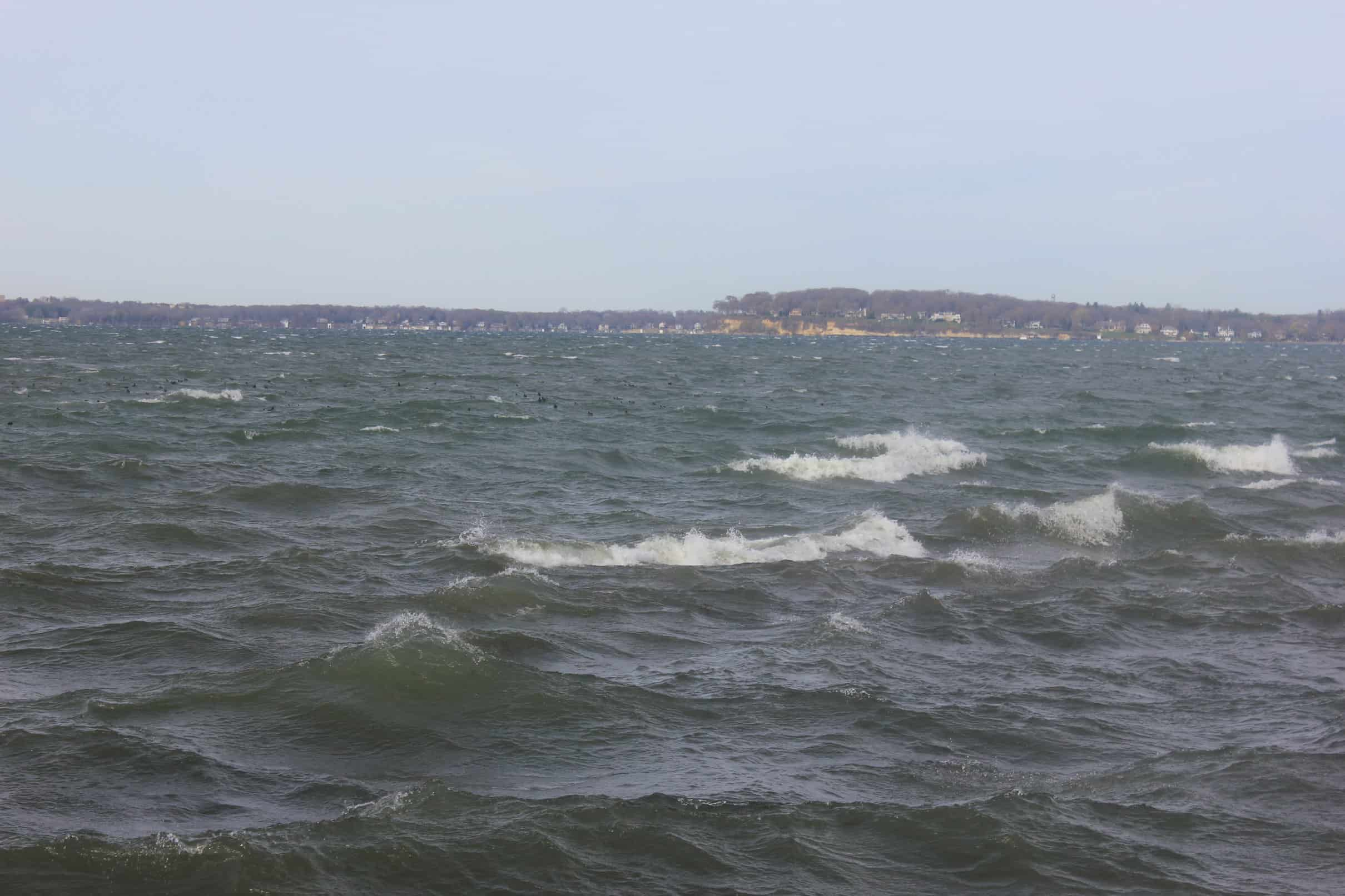 A Choppy Lake on a Windy Day